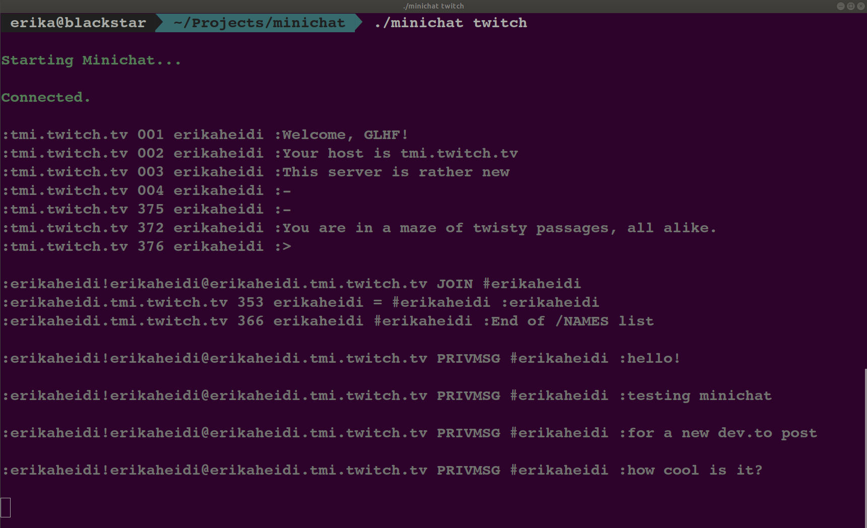 terminal chat output