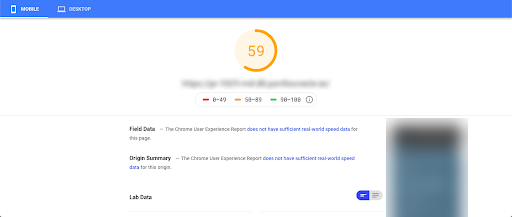 Higher PageSpeed Insights score after applying changes