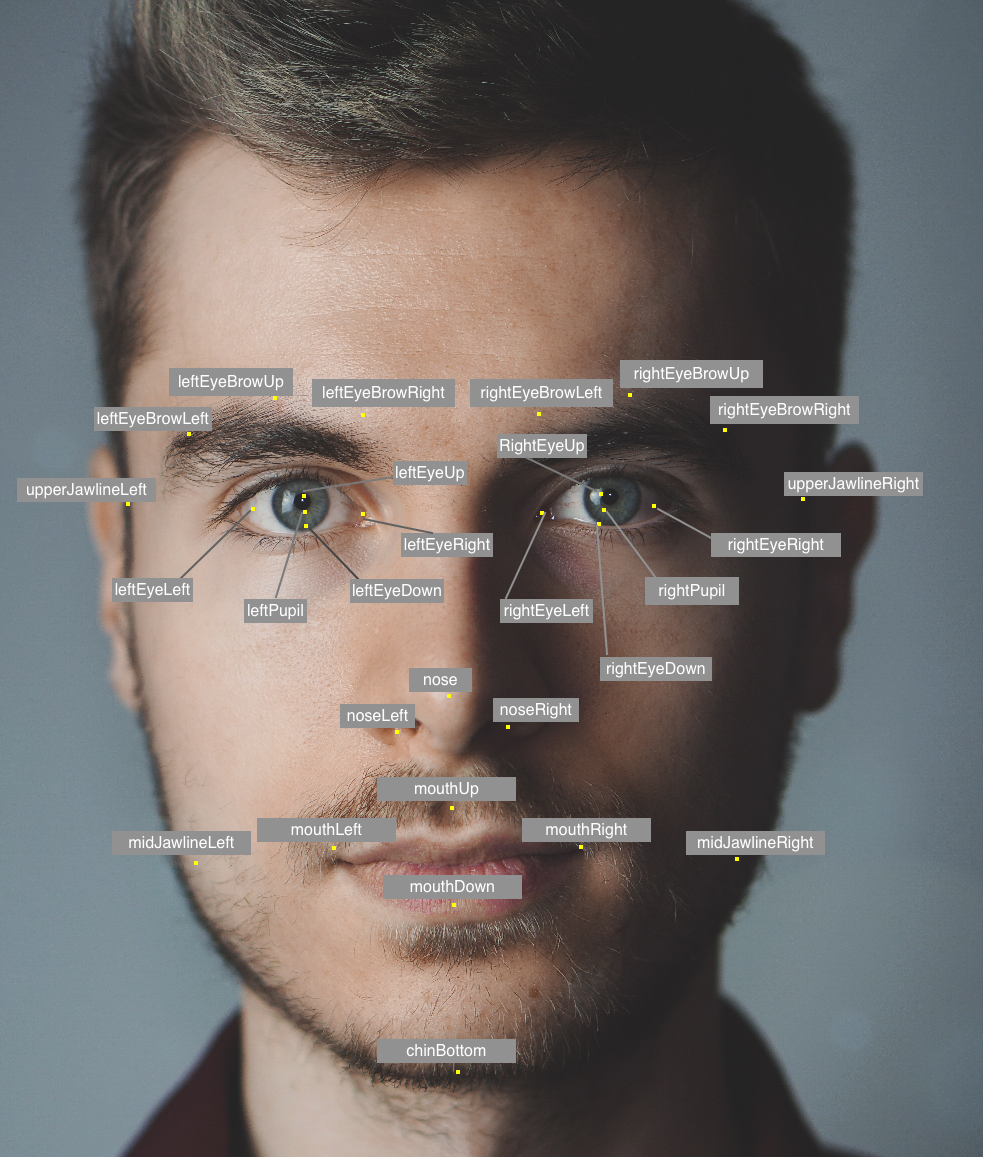 Man's face with facial landmarks noted