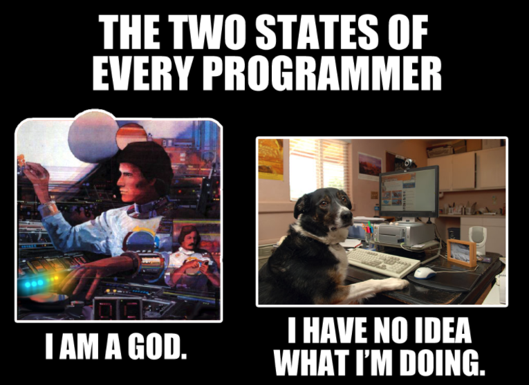 "Two side-by-side images of a man coding and a dog coding. The man thinks he is a god because he has learned everything about programming. On the other hand, the dog says, ""I have no idea what I'm doing."""