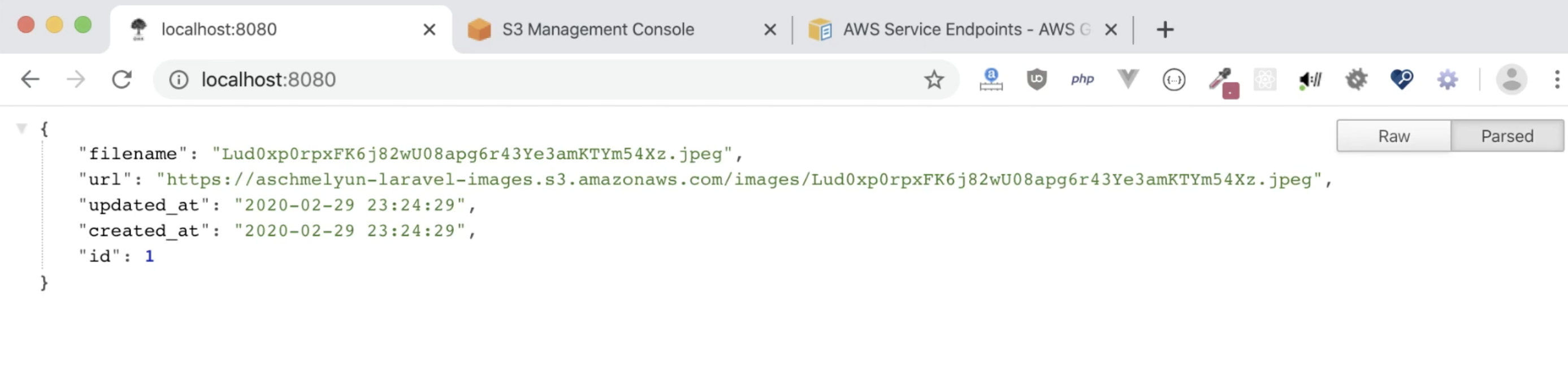 Screenshot of JSON image object from our Laravel app