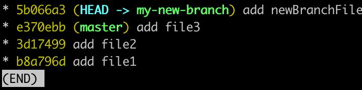 screenshot of rebased git log