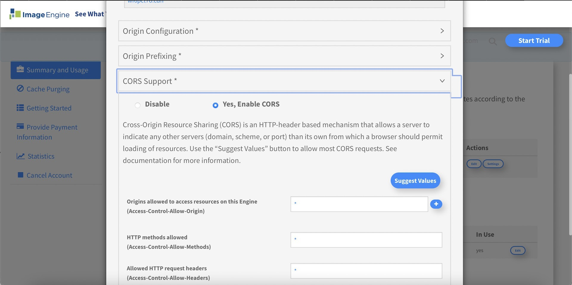 setting cors in IE