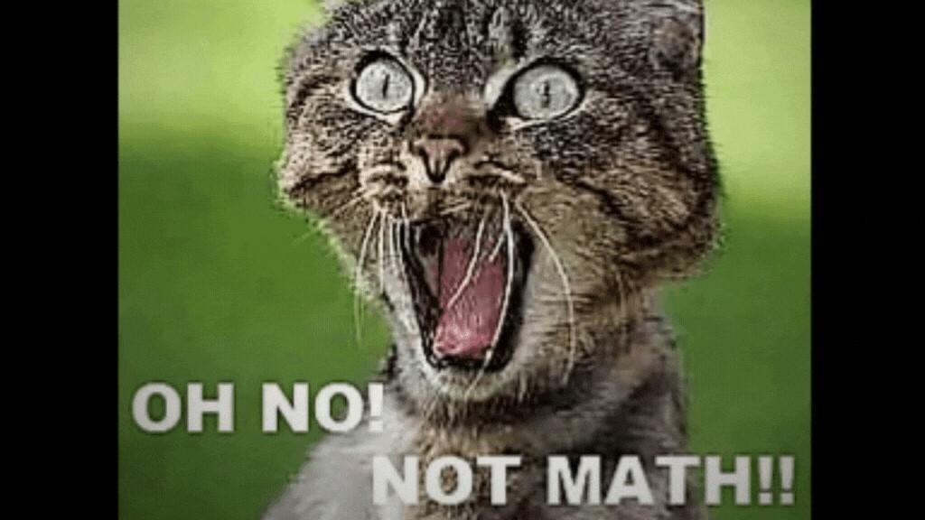 oh-no-not-math-startled-cat