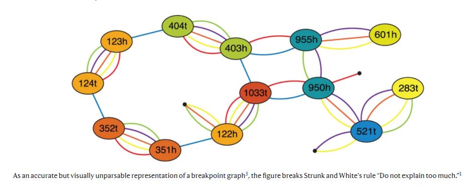 Imagem com um grafo multicolorido, com 3 a 4 nós conectando pares de nós. As arestas também tem várias cores