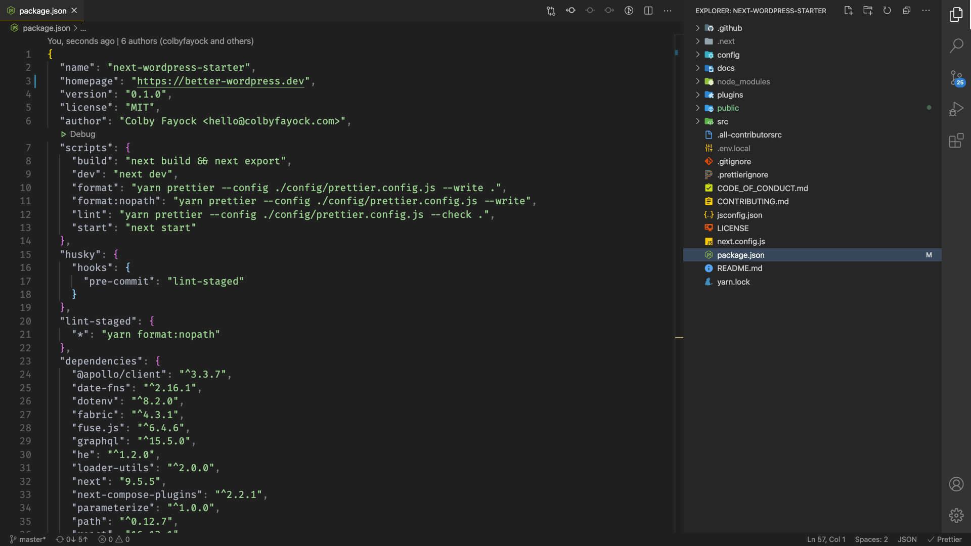 Screenshot of package.json file