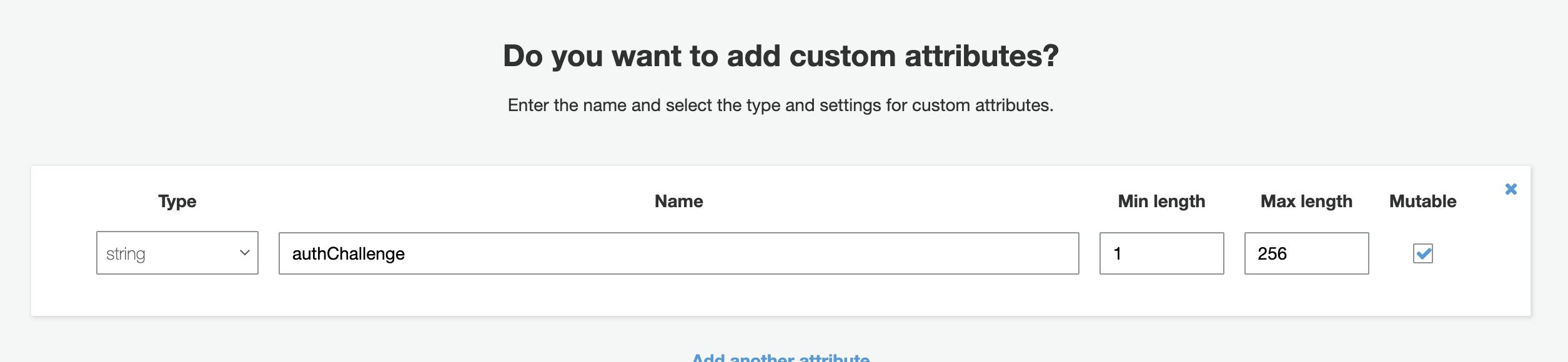 Custom Attribute