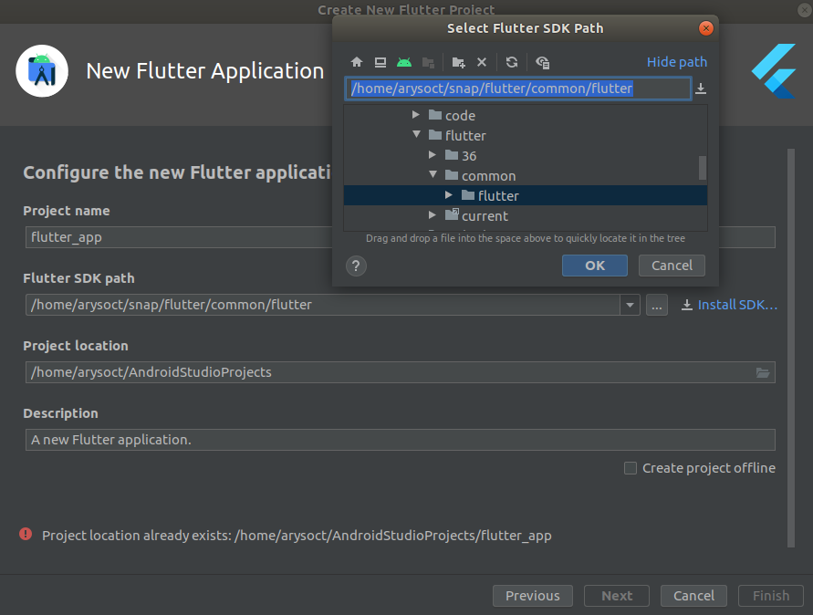 Flutter Project Config
